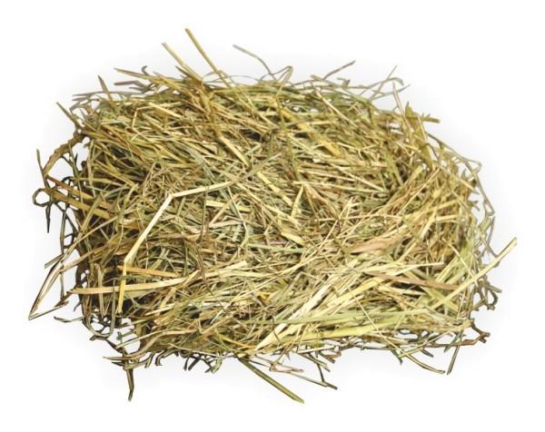 Heu / Gras zur Verzierung von Weihnachtskrippenställe